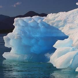 Mo Barton - Blue Iceberg