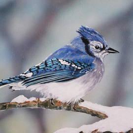 Lillian  Bell - Blue Jay