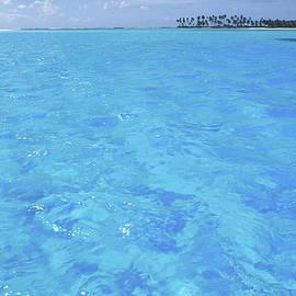 Sean Davey - Blue Lagoon.