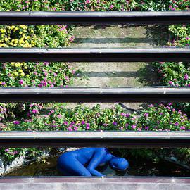 Zina Zinchik - Blue man down