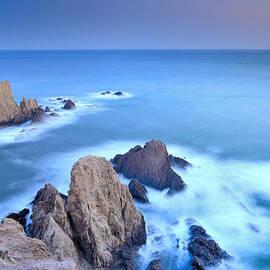 Guido Montanes Castillo - Blue mermaid reef
