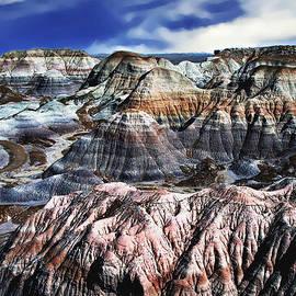 Bob and Nadine Johnston - Blue Mesa - Painted Desert