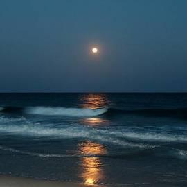 Cynthia Guinn - Blue Moon