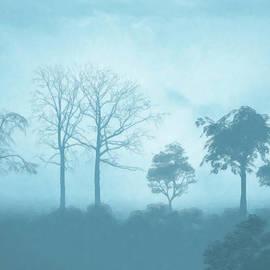 Anthony Mwangi - Blue Morning