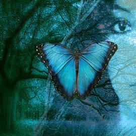 Maureen Tillman - Blue Morpho