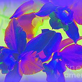 Photographic Art and Design by Dora Sofia Caputo - Blue Orchids Pop Art