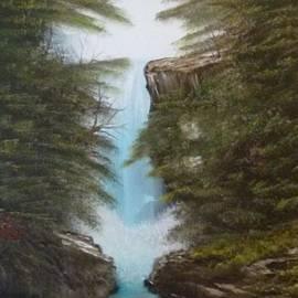 Lee Bowman - Blue Ridge Forest Waterfall 139
