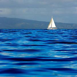 Nature  Photographer - Blue Serenity - A single sailboat sailing on a vast ocean