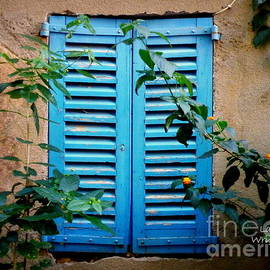 Lainie Wrightson - Blue Shuttered Window