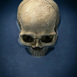 Edward Fielding - Blue Skull