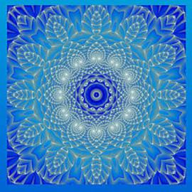 Hanza Turgul - Blue Space Flower