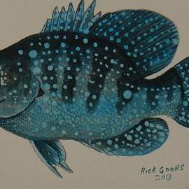Richard Goohs - Blue Spotted Sunfish