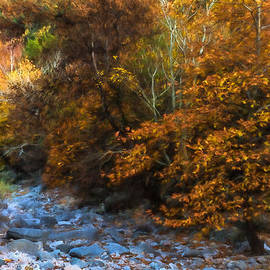 Georgia Mizuleva - Blue Stones Yellow Leaves - a Dry River Impressions