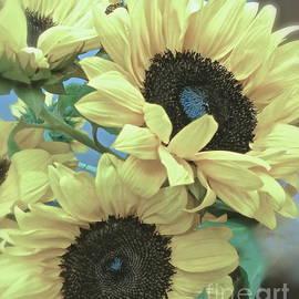 Christie Morgans - Blue Sunflowers