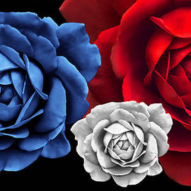 Jennie Marie Schell - Blue White Red Roses Abstract