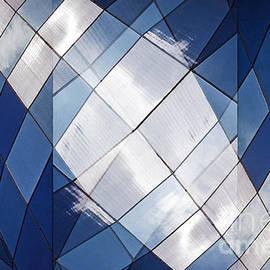Thomas Carroll - Blue Wonder