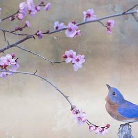 Bonnie Barry - Bluebird and Plum Blossoms
