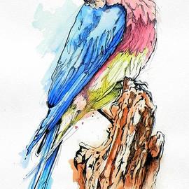 Paul Miners - Bluebird