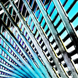 Nancy E Stein - Blurred Lines