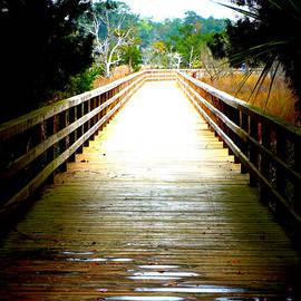 Laurie Pike - Boardwalk Canopy