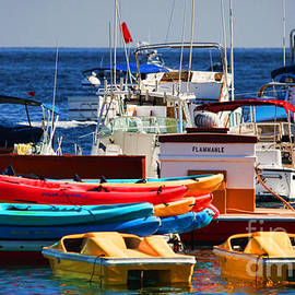 Diana Sainz - Boat Cluster in Catalina by Diana Sainz