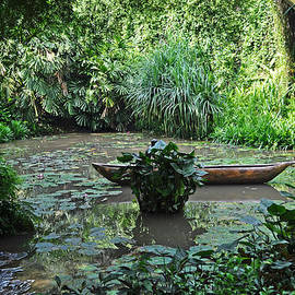Judith Russell-Tooth - Boat in Jungle