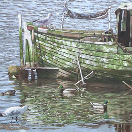 Martin Davey - Boat Wreck With Sea Birds