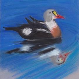 Heidi Goddyn - Bobbing duck