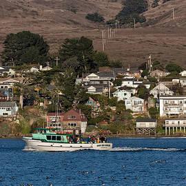 Kathleen Bishop - Bodega Bay in December