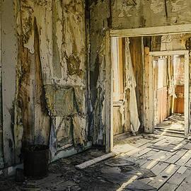 LeeAnn McLaneGoetz McLaneGoetzStudioLLCcom - Bodie California Forgotten Ballroom