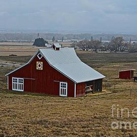 Lisa  Telquist - Boitano Farm Quilt Barn
