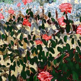 David Zimmerman - Bon Air Bouquet