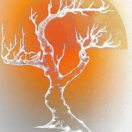 Greg Moores - Bonsai Orange
