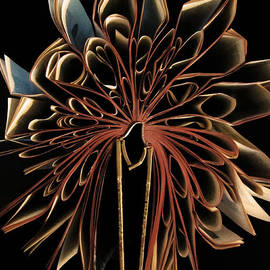 Nicklas Gustafsson - Book Flower