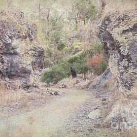 Elaine Teague - Boomerang Gorge in Yanchep