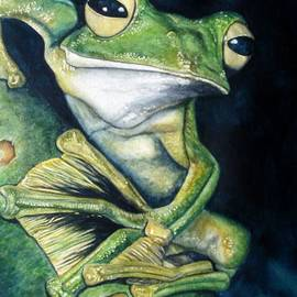 Boreal Flyer Tree Frog