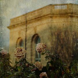 Terry Rowe - Botanic Roses