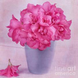 Carolyn Rauh - Bougainvillea Blooms in a Blue Vase