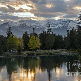 Bob Phillips - Bow River Reflections