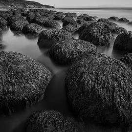 About Light  Images - Bowling Ball Beach