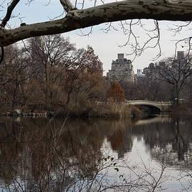 Georgia Mizuleva - Bows and Arches - New York City Central Park