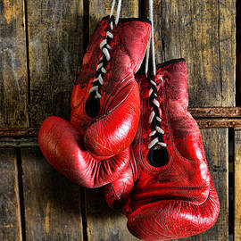 Paul Ward - Boxing Gloves - Now retired