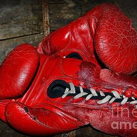 Paul Ward - Boxing Gloves