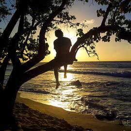 Jo Ann Tomaselli - Boy In A Tree