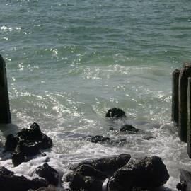 Reno Manne - Bradenton Beach