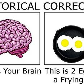 Brain and Eggs 2