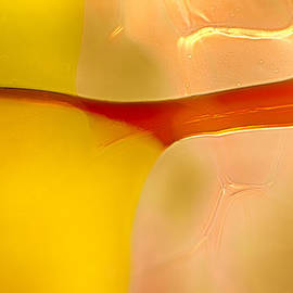 Omaste Witkowski - Branches of Light