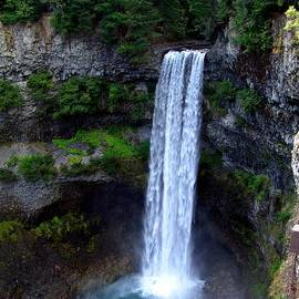 George Cousins - Brandywine Falls