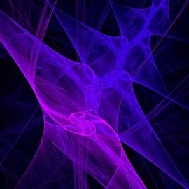 Susan Maxwell Schmidt - Brane Theory