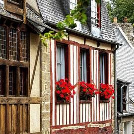 Elf Evans - Bretagne Style